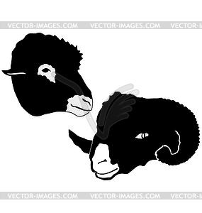 Set mit Widder und Schafe - Vector-Abbildung