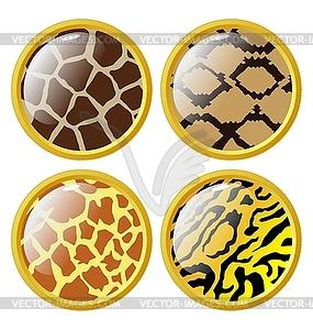 Reihe von Tasten aus Tierfellen - Vektor-Design