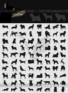 Set von Hunden - Vector-Clipart EPS