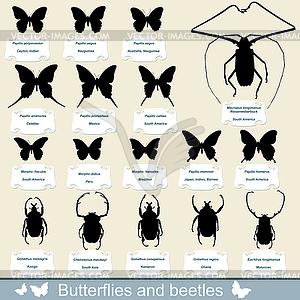 Silhouetten von Insekten - Käfer und Schmetterlinge - Stock Vektor-Bild