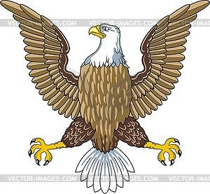 Amerikanischer Weißkopfseeadler - Vektor-Abbildung