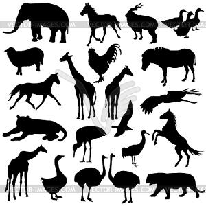 Schwarze Silhouetten Set Zootiere Sammlung - Vektor-Clipart EPS