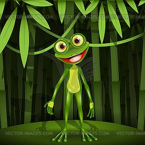 Frosch im Dschungel - Vektor-Klipart