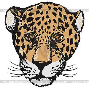 Jaguar - Vektorgrafik