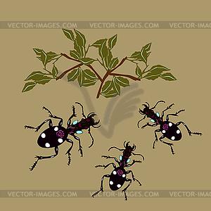 Nette Insekten und Pflanzen - Vektor-Clipart / Vektor-Bild