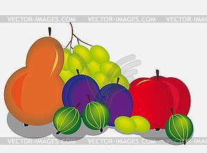 Früchte - farbige Vektorgrafik