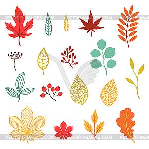 Set von verschiedenen stilisierte Blätter im Herbst und Elemente - Stock Vektor-Bild