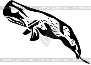 Pottwal - Vektor-Clipart / Vektor-Bild