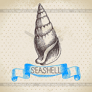 Seashell Skizze. Jahrgang - Stock Vektor-Clipart