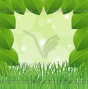 Hintergrund mit grünen Blättern und Gras - Vektorgrafik-Design