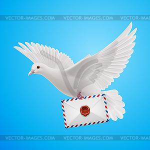Dove weiß - Vector-Bild