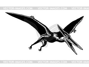 Pterodactyl - Vektorgrafik-Design