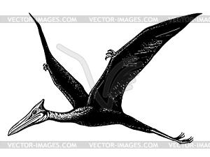 Flugsaurier - Quetzalcoatl - Vektor Clip Art