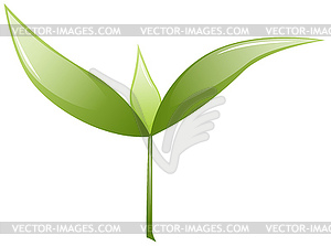 Grün sprießen - Vektorabbildung