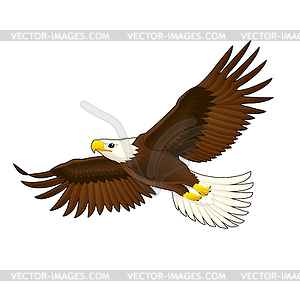 American Eagle - Vektor-Illustration