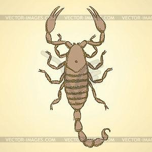 Skizze schrecklichen Skorpion im Vintage-Stil - Clipart