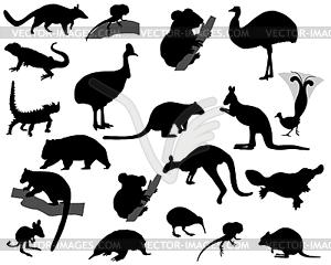 Tiere von Australien - Vector-Clipart / Vektor-Bild