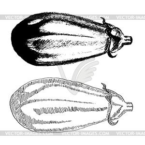 Aubergine - Vektor-Clipart / Vektor-Bild