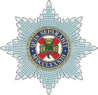 British Army Irish Guards, badge